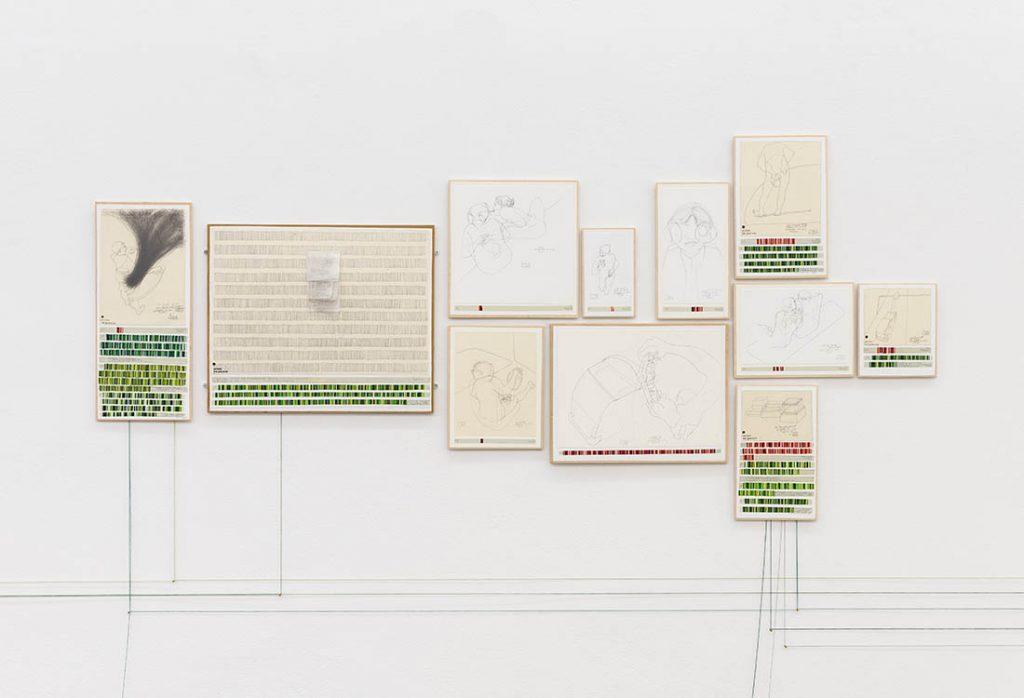 danica phelps, 'income's outcome (installation view'